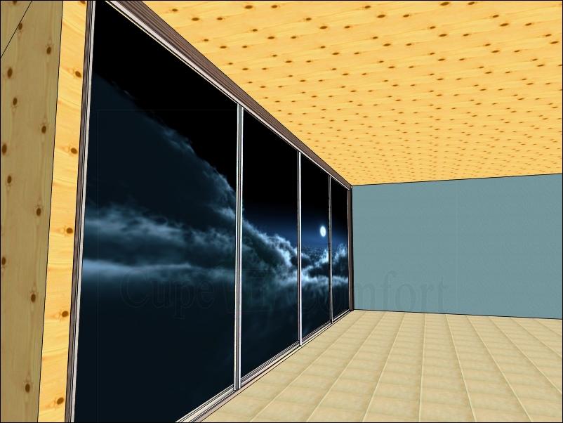 Двери купе с фотопечатью под мансардную крышу в доме
