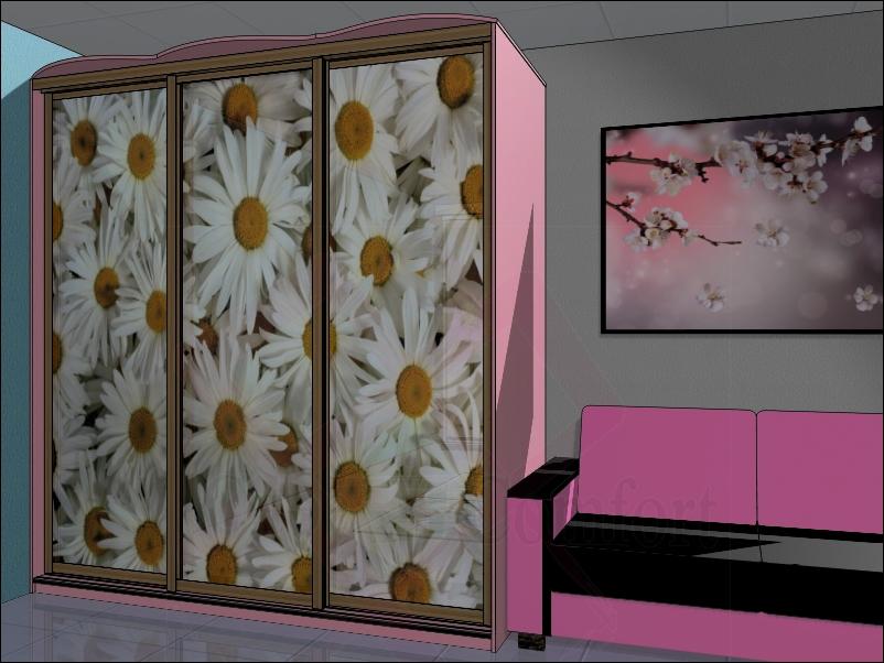 Фотография дизайна шкафа-купе в прихожей