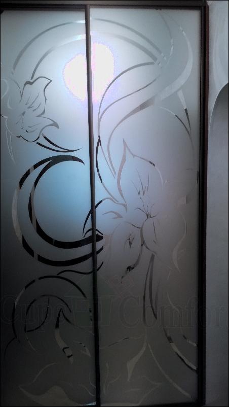 Двери купе для гардеробной зеркальные с рисунком фото